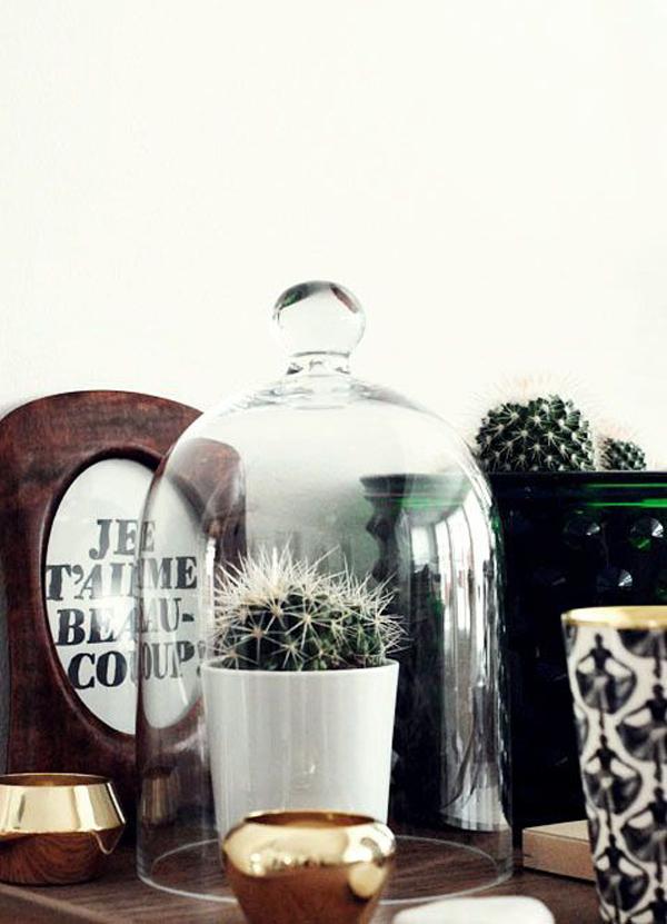 campanas-vidrio-bell-jar-estiloescandinavo-12