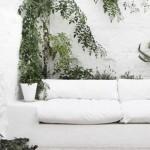Combinación refrescante: color blanco y plantas