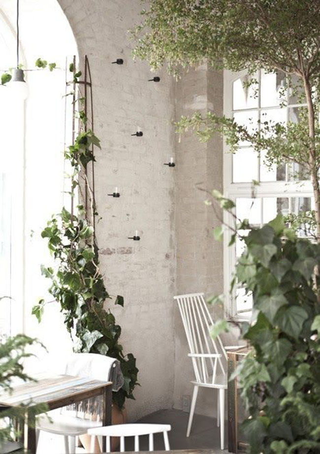 decoracion-blanco+plantas-04