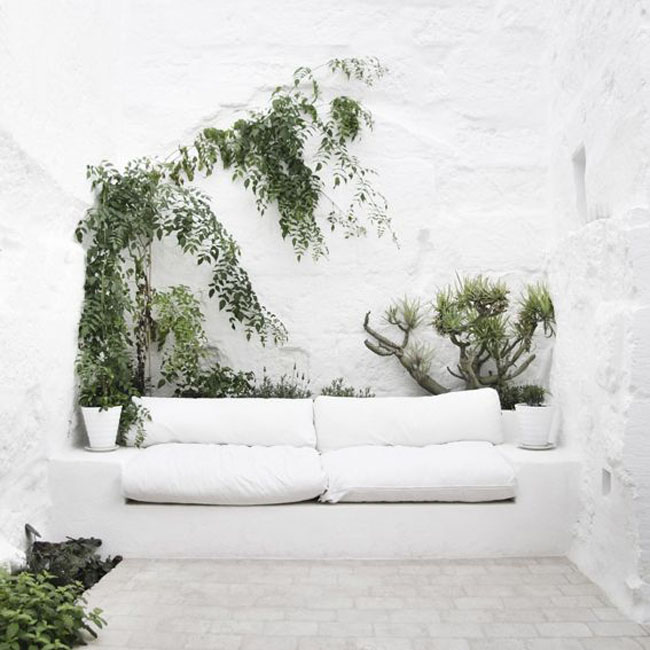 decoracion-blanco+plantas-08