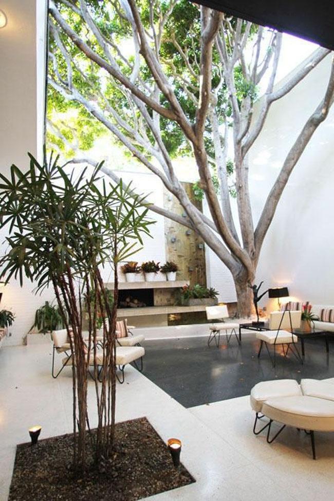patio_interior_07