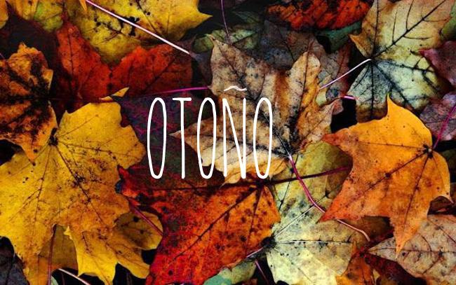 rincones_otoño-escandinavo-09