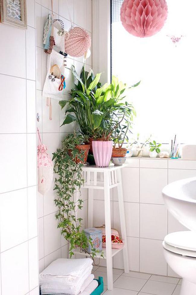 plantas-en-el-baño-01