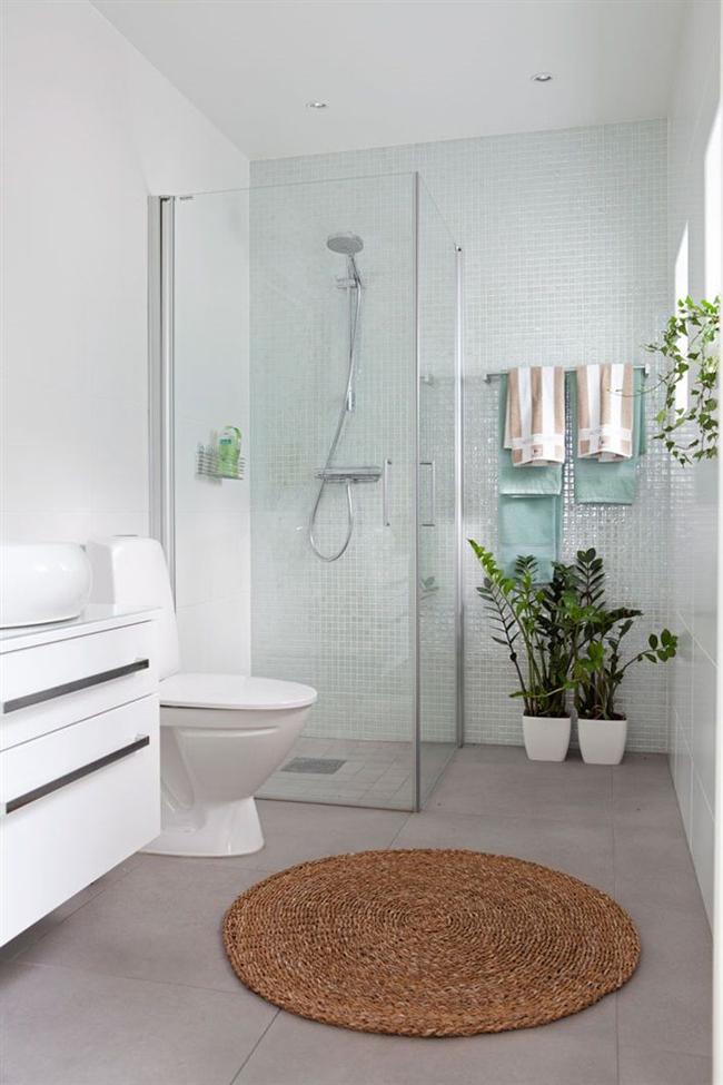 plantas-en-el-baño-11
