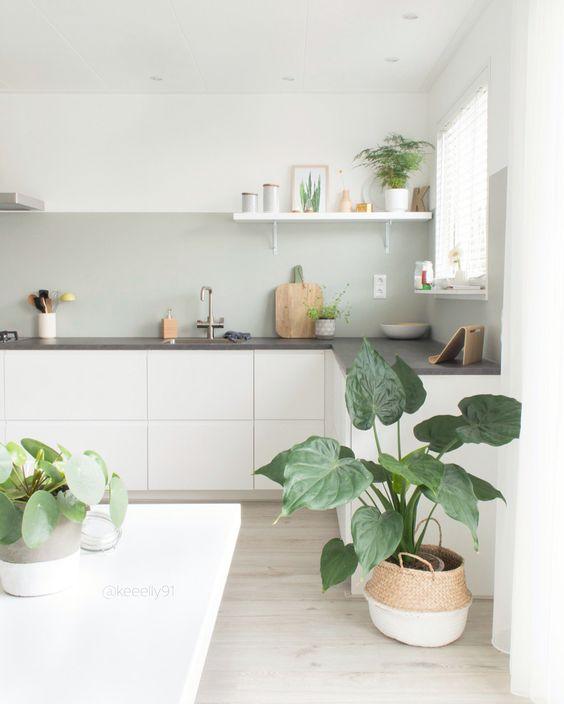 decorar-con-plantas-10