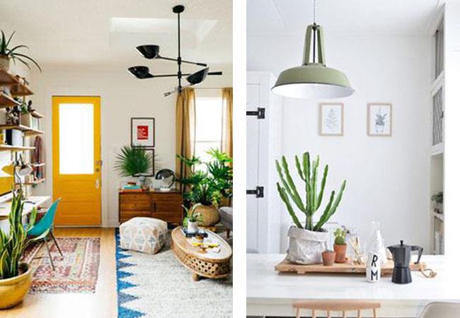 decorar-con-plantas-11