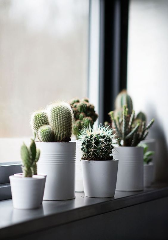 decoracion-ventanas-02