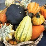 Un toque diferente para decorar con calabazas en otoño